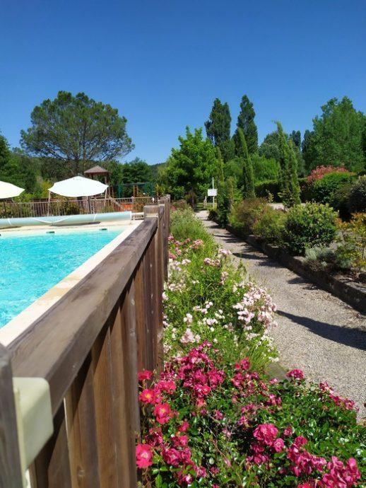 Belles fleurs à côté de la piscine chauffée du Camping Dordogne